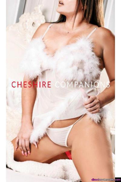 Cheshire Companions Agency